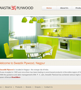 Swastik Plywood Ltd - Economy Website Package