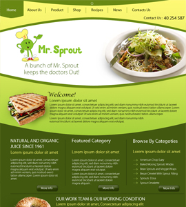 Mr Sprout Online Health Consultant Website Design