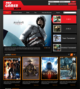 Pro Gamer Online Gaming Website